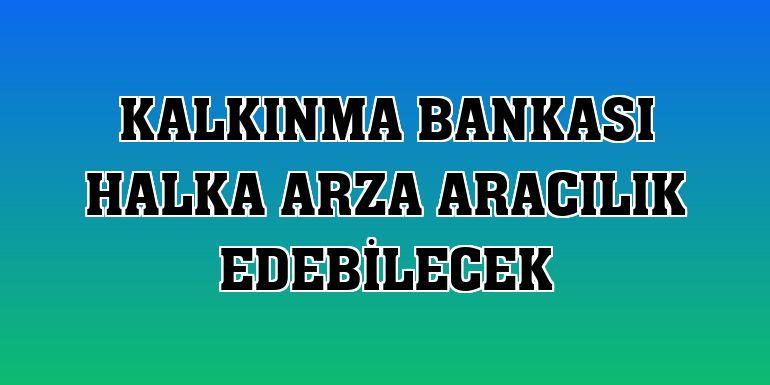 Kalkınma Bankası halka arza aracılık edebilecek