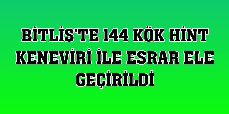 Bitlis'te 144 kök Hint keneviri ile esrar ele geçirildi