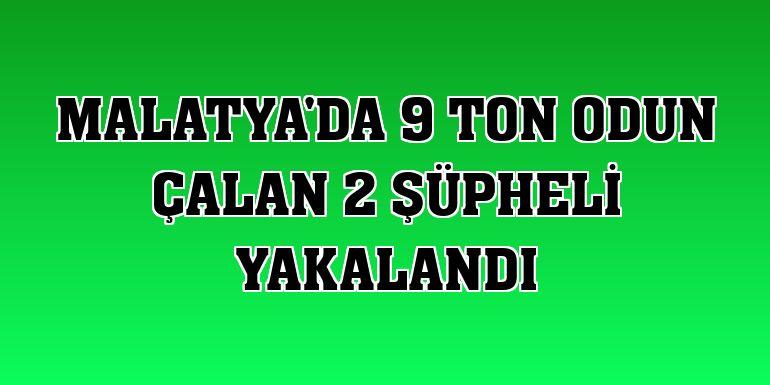 Malatya'da 9 ton odun çalan 2 şüpheli yakalandı