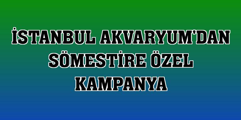 İstanbul Akvaryum'dan sömestire özel kampanya