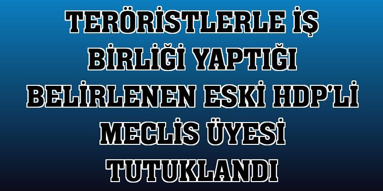 Teröristlerle iş birliği yaptığı belirlenen eski HDP'li meclis üyesi tutuklandı