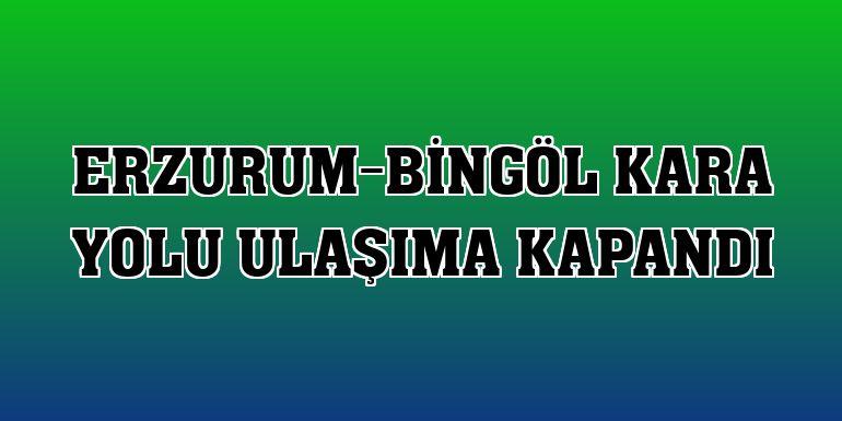 Erzurum-Bingöl kara yolu ulaşıma kapandı