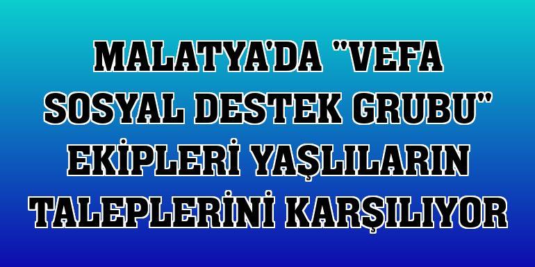 """Malatya'da """"Vefa Sosyal Destek Grubu"""" ekipleri yaşlıların taleplerini karşılıyor"""