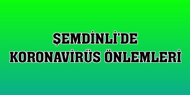 Şemdinli'de koronavirüs önlemleri