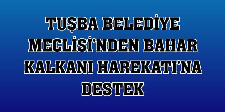 Tuşba Belediye Meclisi'nden Bahar Kalkanı Harekatı'na destek