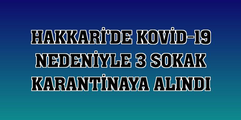 Hakkari'de Kovid-19 nedeniyle 3 sokak karantinaya alındı