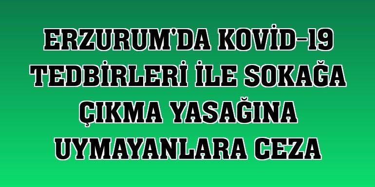 Erzurum'da Kovid-19 tedbirleri ile sokağa çıkma yasağına uymayanlara ceza