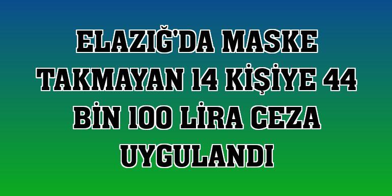Elazığ'da maske takmayan 14 kişiye 44 bin 100 lira ceza uygulandı