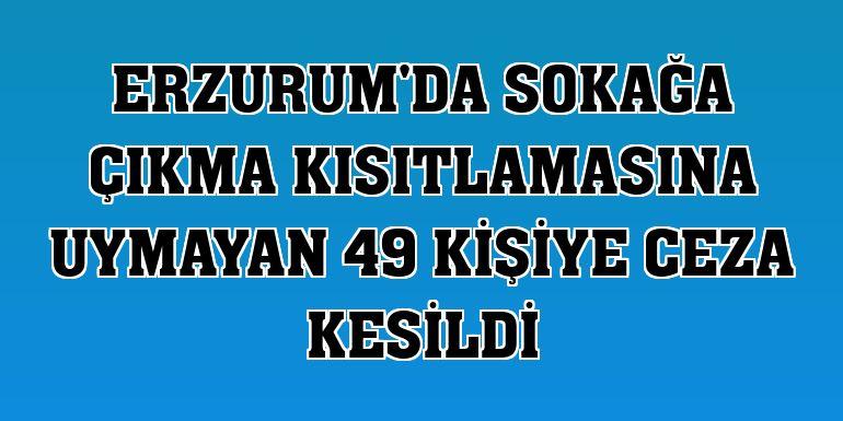 Erzurum'da sokağa çıkma kısıtlamasına uymayan 49 kişiye ceza kesildi