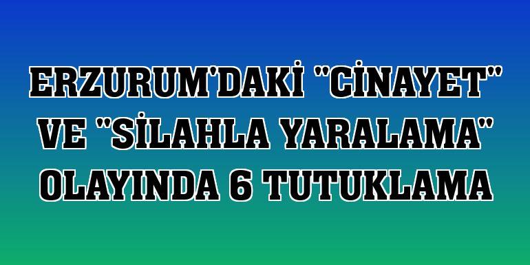 """Erzurum'daki """"cinayet"""" ve """"silahla yaralama"""" olayında 6 tutuklama"""