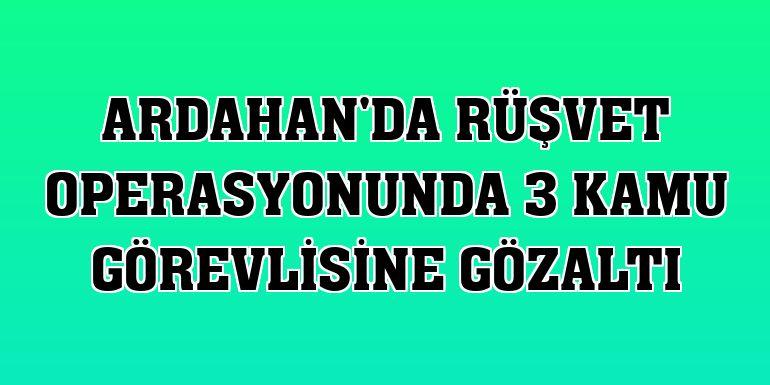 Ardahan'da rüşvet operasyonunda 3 kamu görevlisine gözaltı