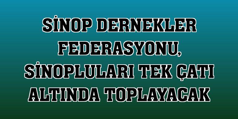 Sinop Dernekler Federasyonu, Sinopluları tek çatı altında toplayacak