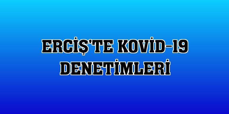 Erciş'te Kovid-19 denetimleri