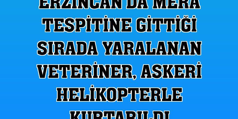 Erzincan'da mera tespitine gittiği sırada yaralanan veteriner, askeri helikopterle kurtarıldı