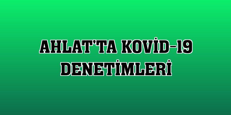 Ahlat'ta Kovid-19 denetimleri