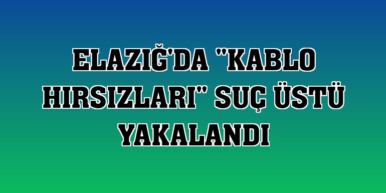 """Elazığ'da """"kablo hırsızları"""" suç üstü yakalandı"""