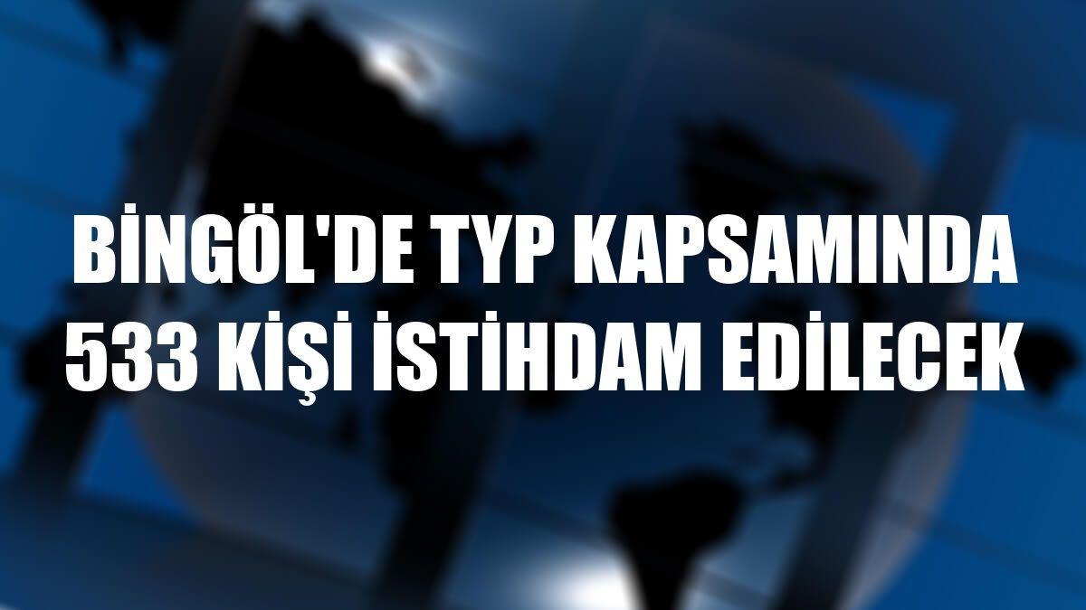 Bingöl'de TYP kapsamında 533 kişi istihdam edilecek