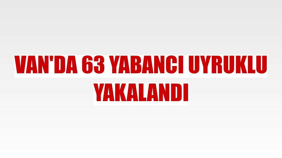 Van'da 63 yabancı uyruklu yakalandı