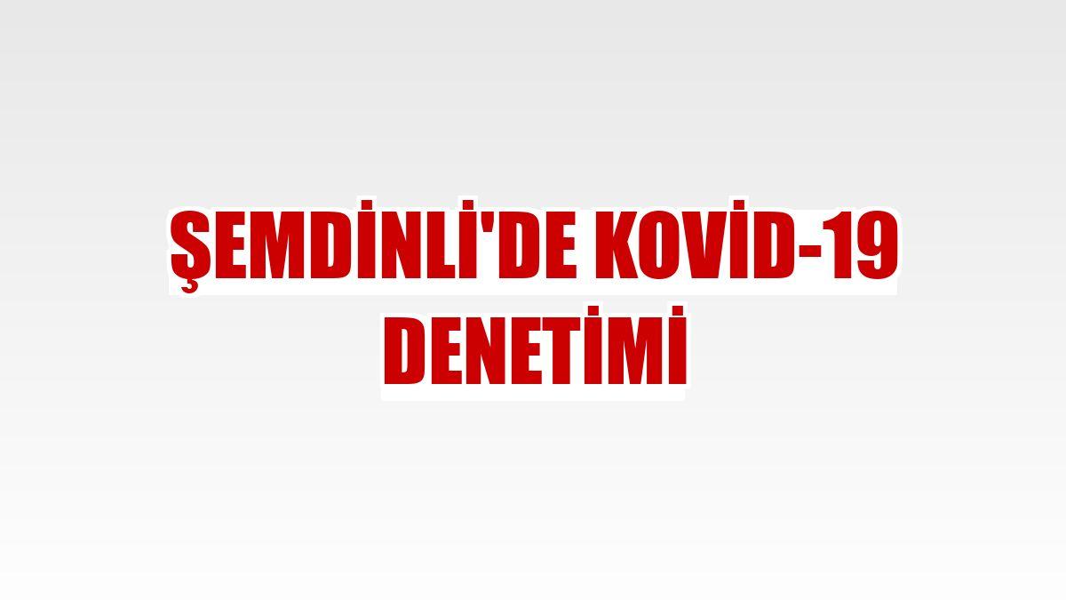Şemdinli'de Kovid-19 denetimi