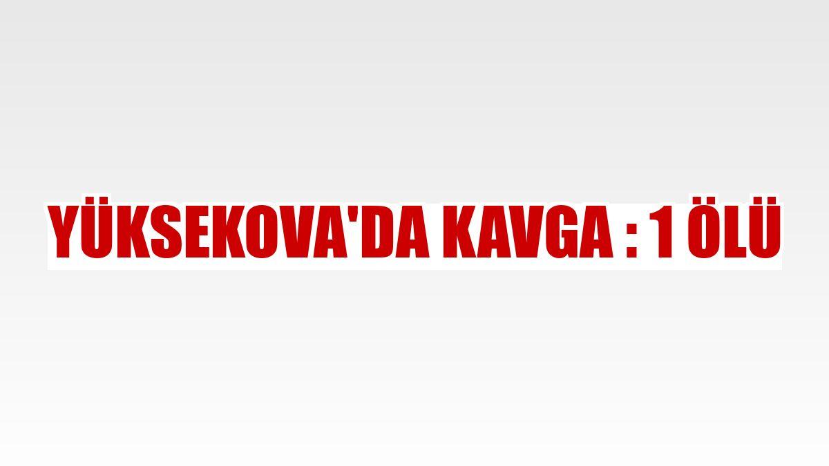 Yüksekova'da kavga : 1 ölü