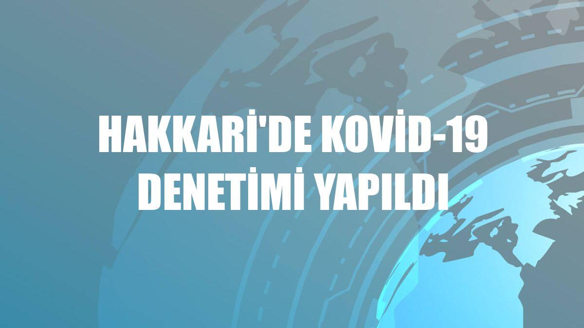 Hakkari'de Kovid-19 denetimi yapıldı