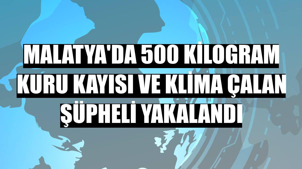 Malatya'da 500 kilogram kuru kayısı ve klima çalan şüpheli yakalandı