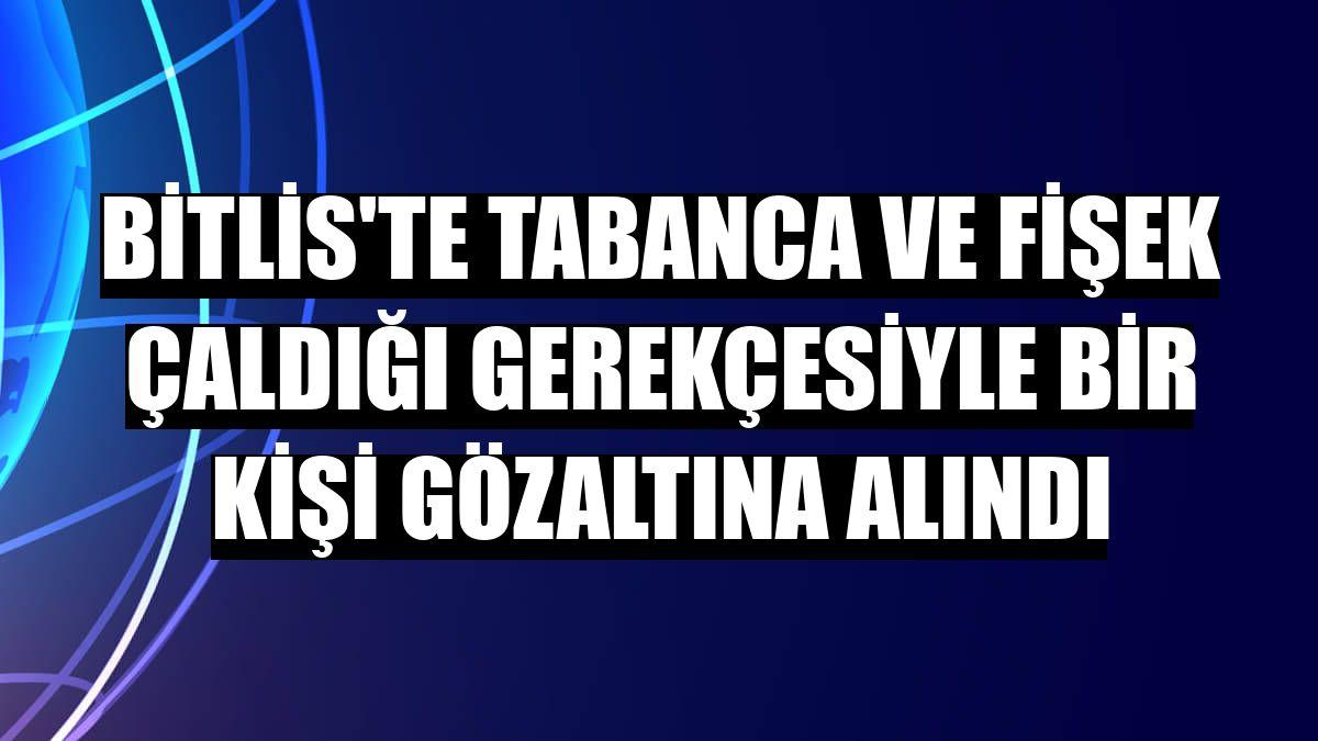 Bitlis'te tabanca ve fişek çaldığı gerekçesiyle bir kişi gözaltına alındı
