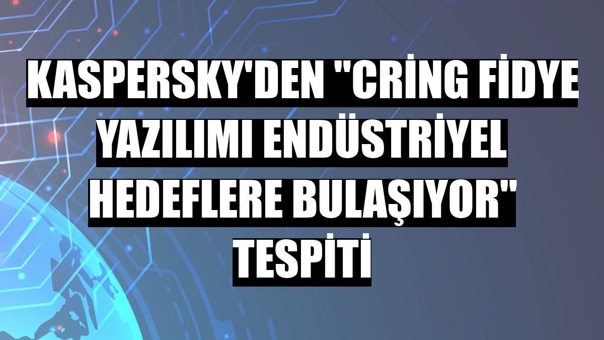 """Kaspersky'den """"Cring fidye yazılımı endüstriyel hedeflere bulaşıyor"""" tespiti"""