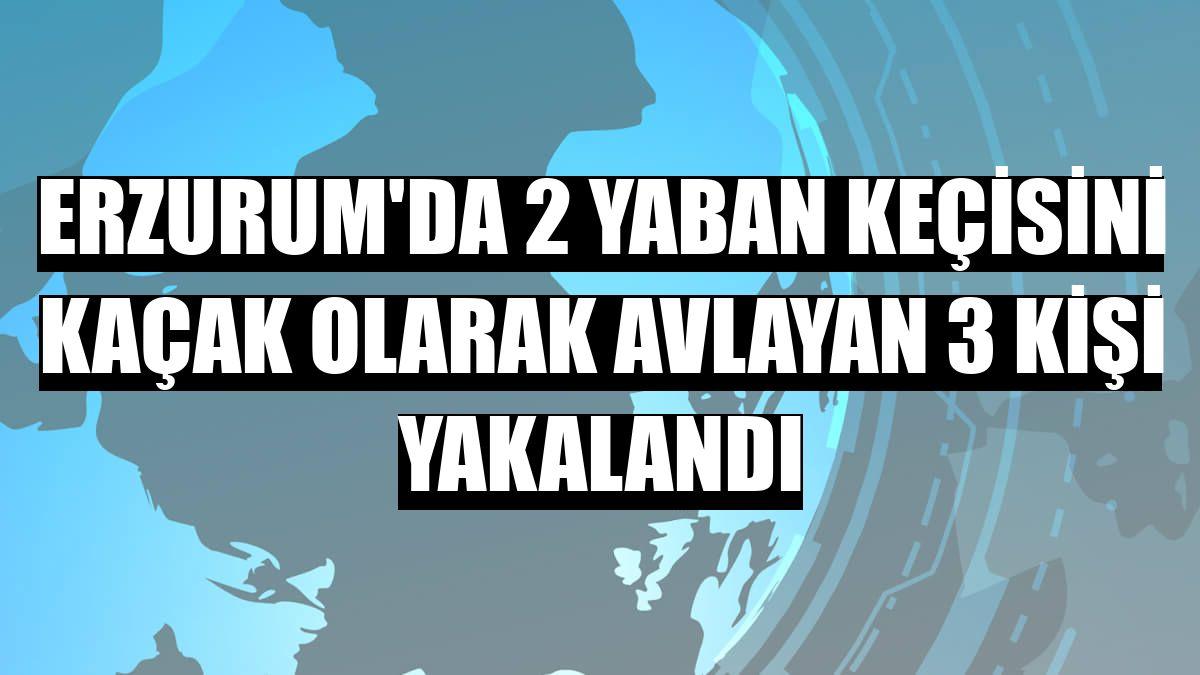 Erzurum'da 2 yaban keçisini kaçak olarak avlayan 3 kişi yakalandı