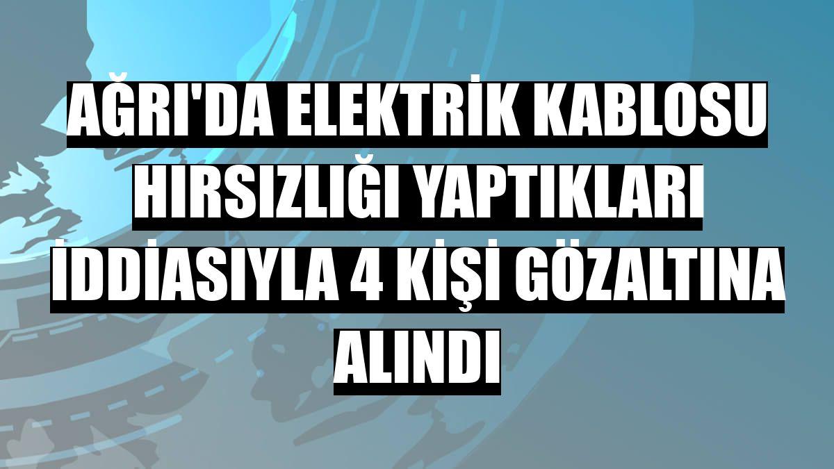 Ağrı'da elektrik kablosu hırsızlığı yaptıkları iddiasıyla 4 kişi gözaltına alındı