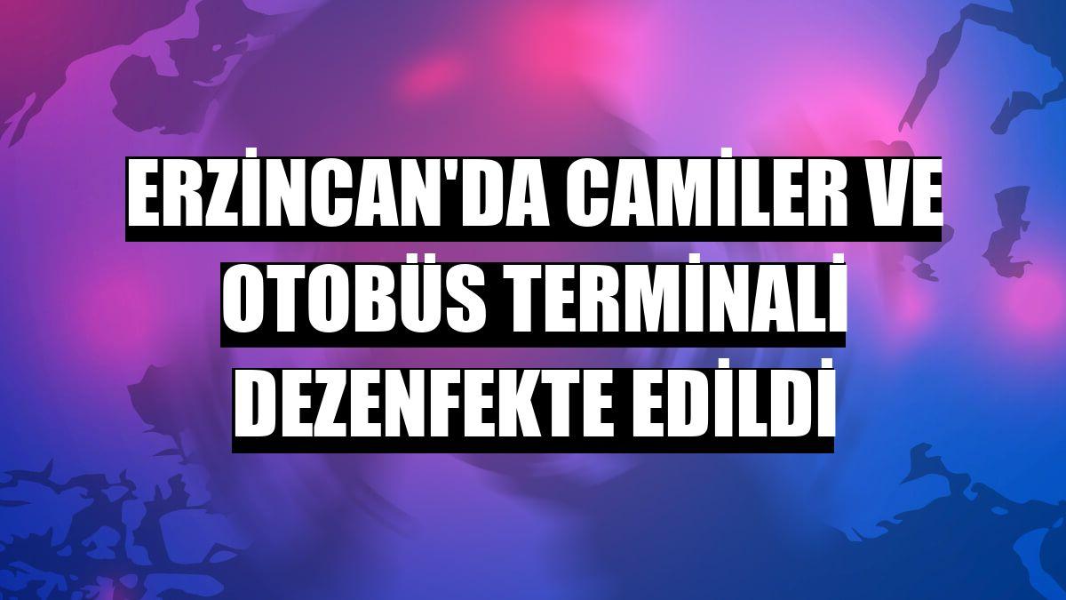 Erzincan'da camiler ve otobüs terminali dezenfekte edildi