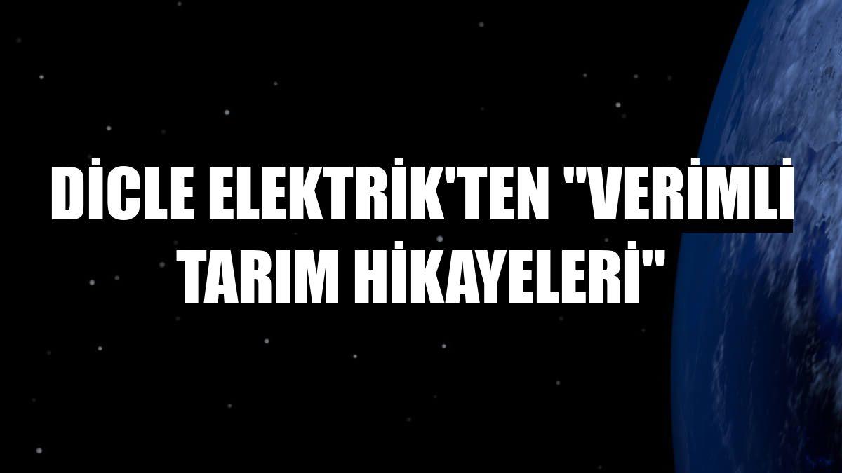 """Dicle Elektrik'ten """"Verimli Tarım Hikayeleri"""""""