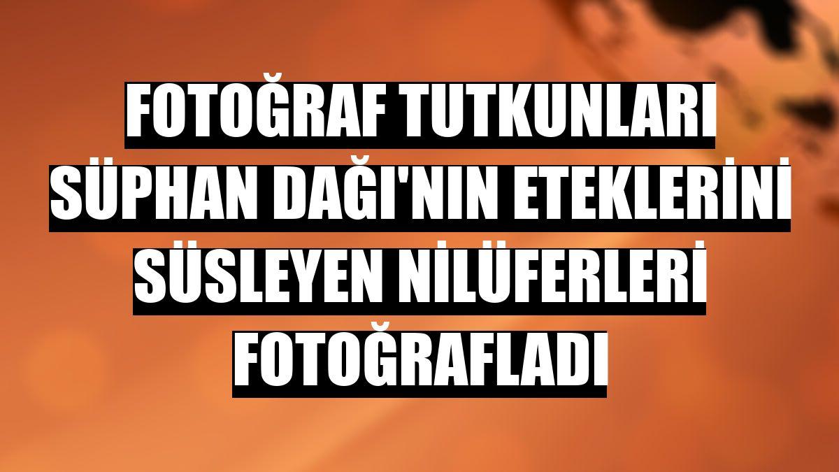 Fotoğraf tutkunları Süphan Dağı'nın eteklerini süsleyen nilüferleri fotoğrafladı