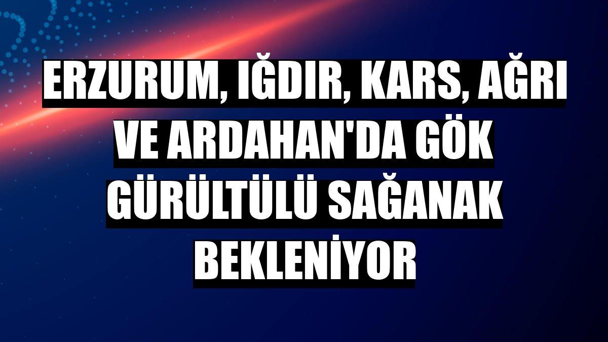 Erzurum, Iğdır, Kars, Ağrı ve Ardahan'da gök gürültülü sağanak bekleniyor