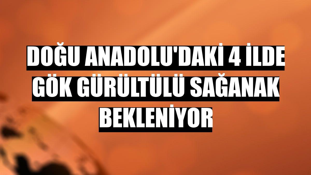 Doğu Anadolu'daki 4 ilde gök gürültülü sağanak bekleniyor