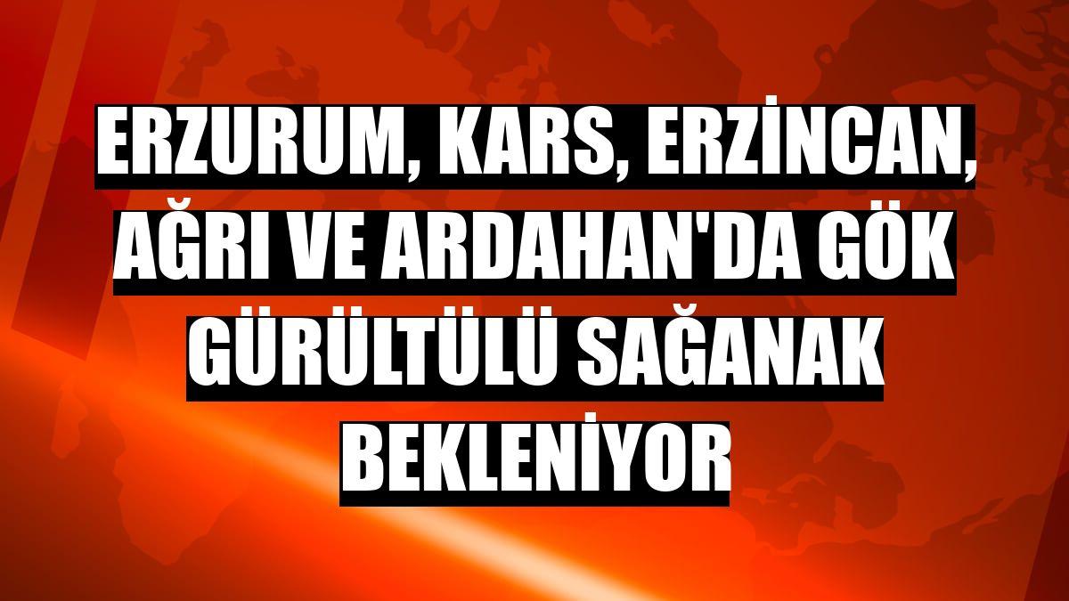 Erzurum, Kars, Erzincan, Ağrı ve Ardahan'da gök gürültülü sağanak bekleniyor