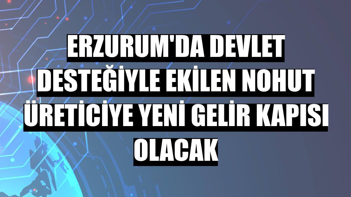 Erzurum'da devlet desteğiyle ekilen nohut üreticiye yeni gelir kapısı olacak