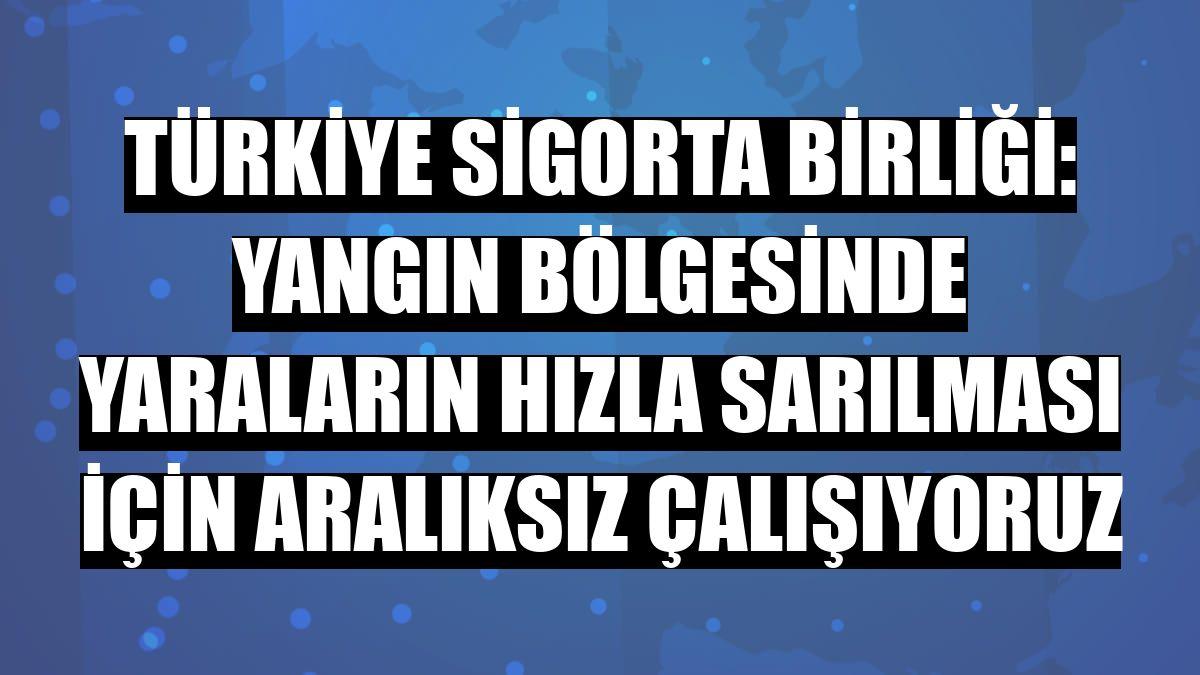 Türkiye Sigorta Birliği: Yangın bölgesinde yaraların hızla sarılması için aralıksız çalışıyoruz