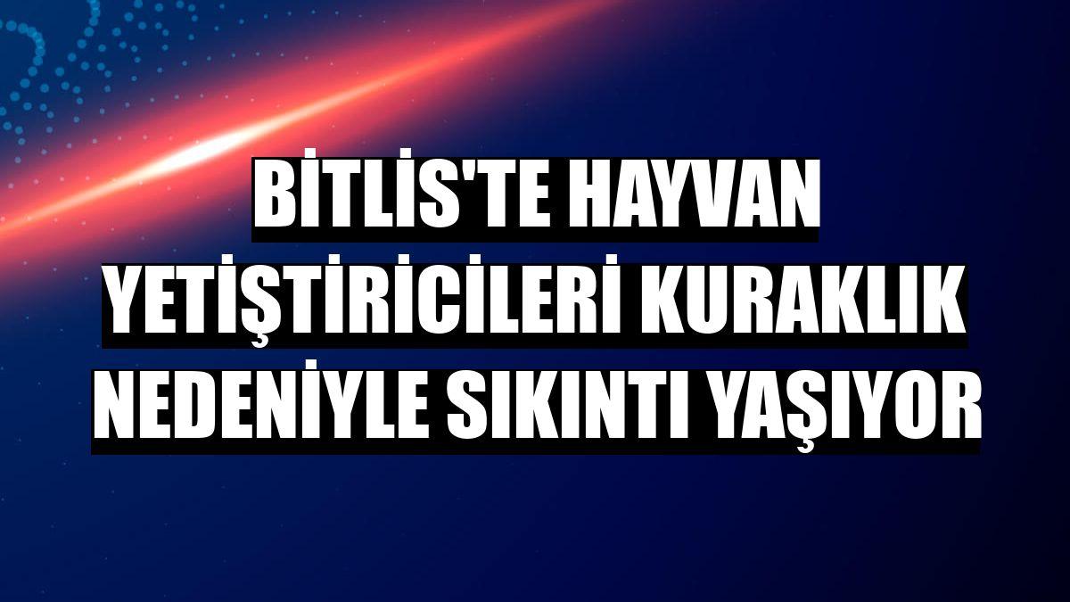 Bitlis'te hayvan yetiştiricileri kuraklık nedeniyle sıkıntı yaşıyor