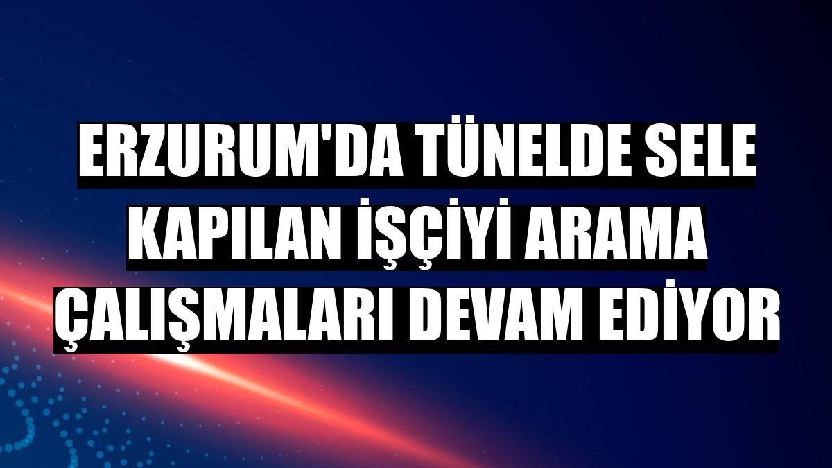 Erzurum'da tünelde sele kapılan işçiyi arama çalışmaları devam ediyor