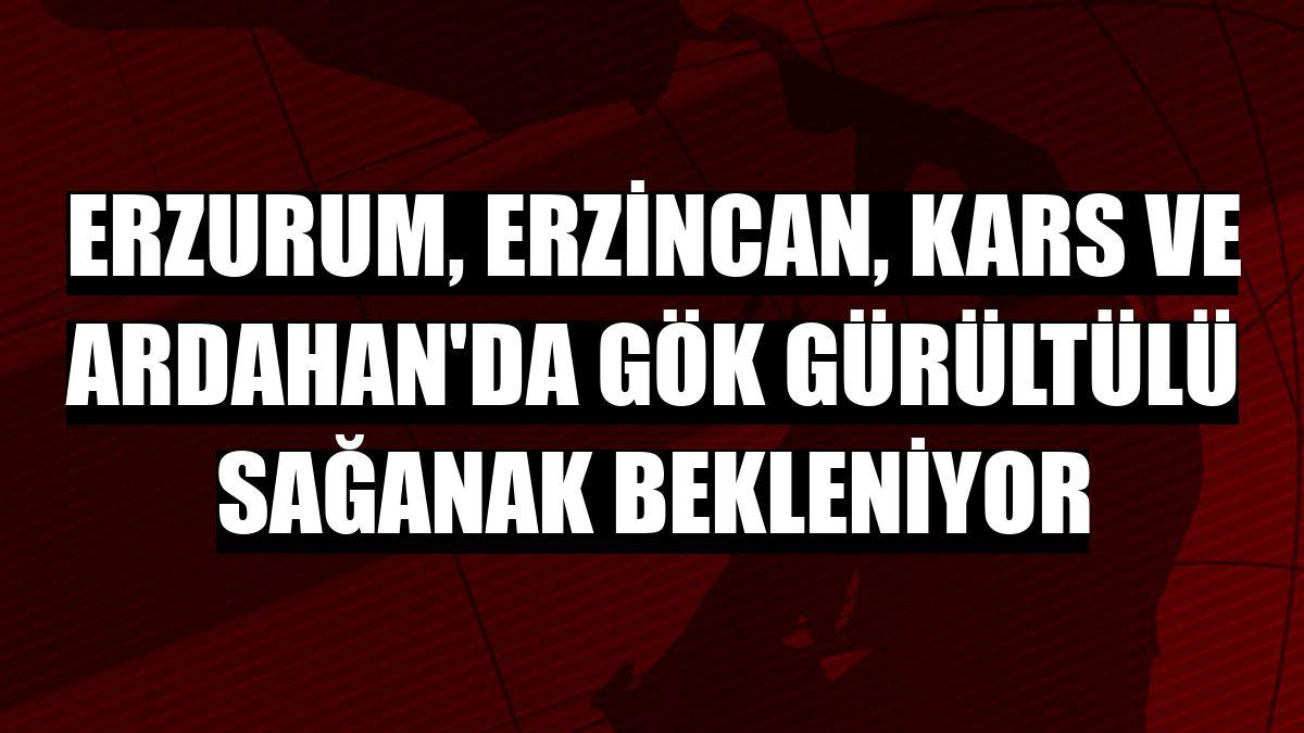 Erzurum, Erzincan, Kars ve Ardahan'da gök gürültülü sağanak bekleniyor