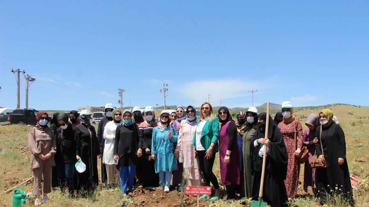 Bingöl'de kadınlar, 3 bin fidanı toprakla buluşturdu