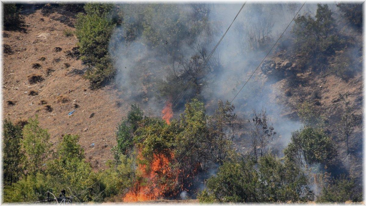 Bitlis'teki orman yangını rüzgarın etkisiyle büyüdü