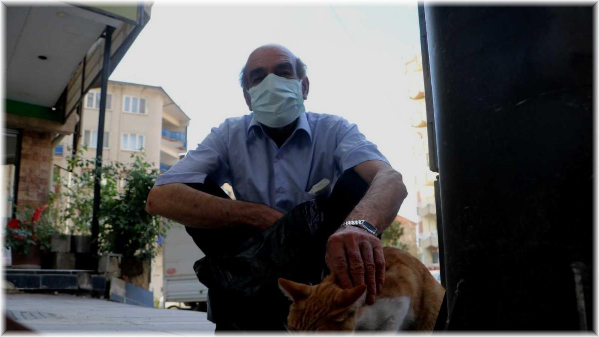 Emekli maaşıyla 200 kediyi besliyor