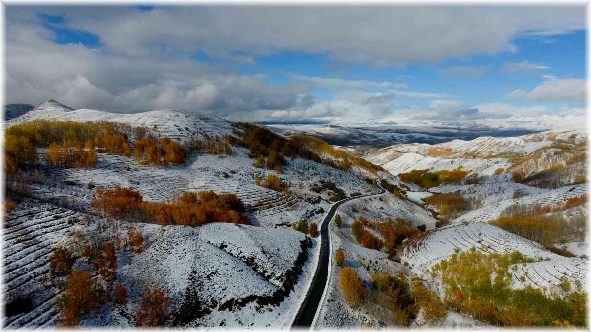 Erzurum ormanlarında kış ve sonbaharın renkleri görsel şölen yaşattı