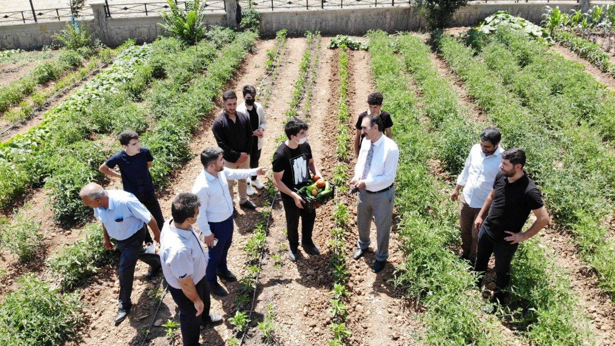 İhtiyaç sahibi ailelerin sebzeleri imam hatipli öğrencilerden