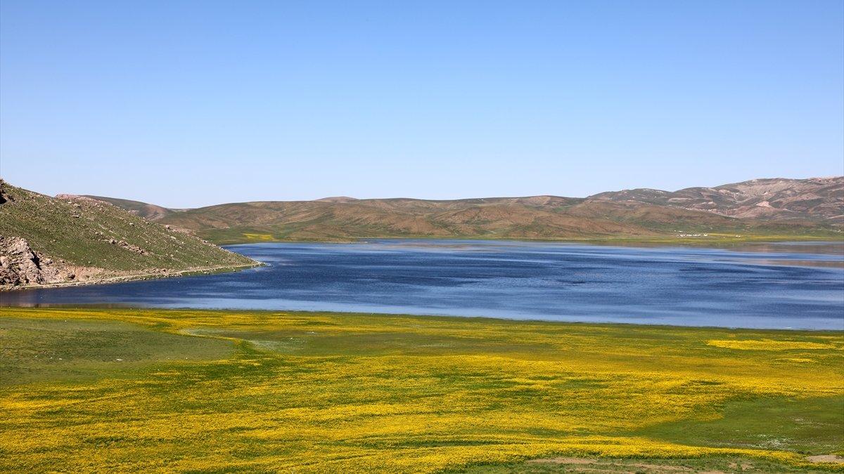 Keşiş Gölü çevresinde açan rengarenk çiçeklerle ziyaretçilerini karşılıyor