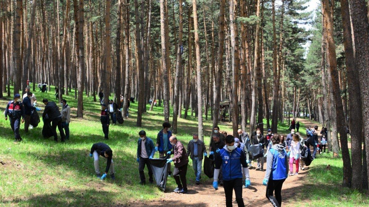 Ormanı didik didik temizlediler