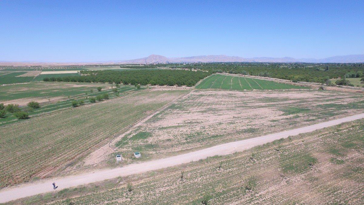 Sulu tarımla ekonomiye 1 milyar 497 milyon TL katkı sağlanacak