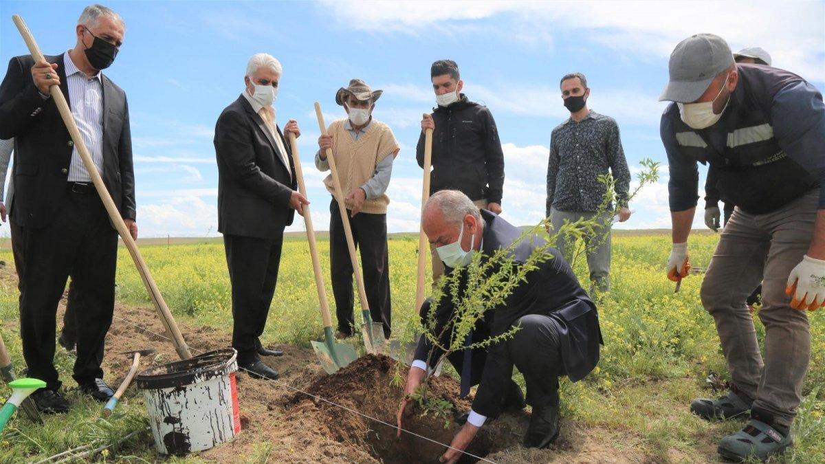 Tuşba'da ceviz ve badem fidanları toprakla buluşturuluyor